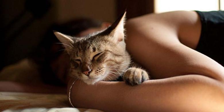 Meski Seru, Tidur Dengan Hewan Peliharaan Ternyata Bahaya Loh